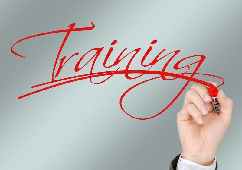 Consultoria e Treinamento
